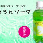 [ob-05]小原 めろんソーダ 500ml【1箱24本入】