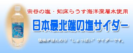 小原 日本最北端の塩サイダー 500mlペットボトル【24本入】